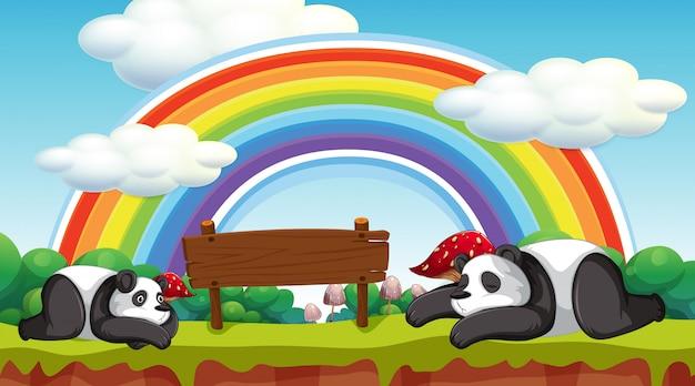 Scena con due panda e cartello in legno