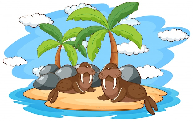 Scene with two walruses on island