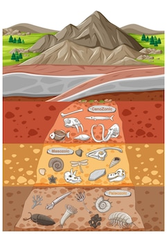 Scene with various animals bones and dinosaurs fossils in soil layers