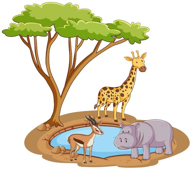 Scena con animali selvatici in riva al laghetto