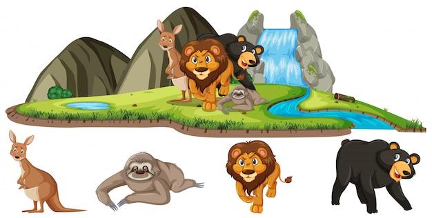 Сцена с дикими животными в поле изолированы