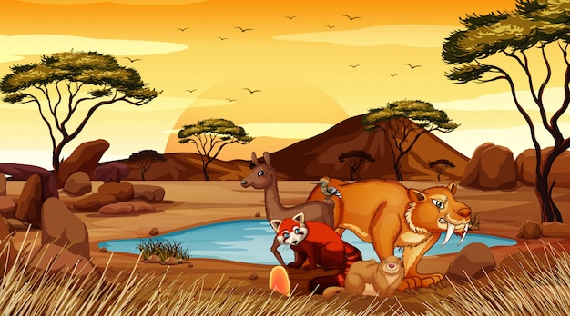 フィールドで野生動物とのシーン