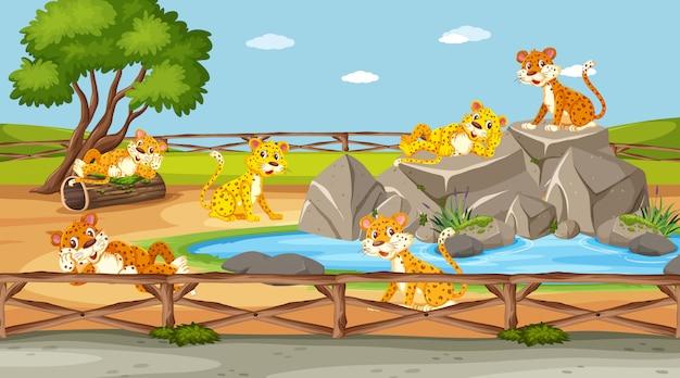 낮 시간에 동물원에서 야생 동물이있는 장면