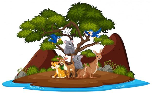 Scene with wild animals on the island