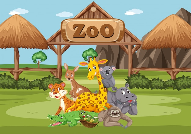 Scene with wild animals in the zoo at day time