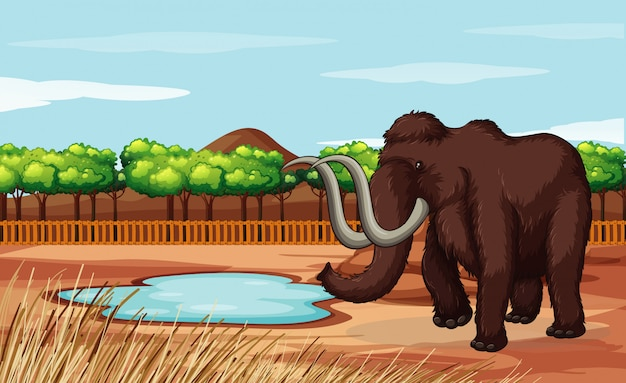 Scene with woolly mammoth in the field