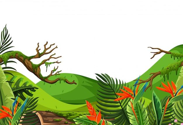 フォレスト内の熱帯の花の風景の背景