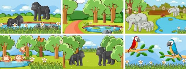 野生のイラストの動物のシーン