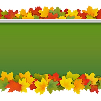 School blackboard with maple leaves isolated on white background