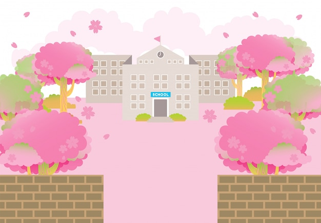 학교 건물 봄 분홍색 벚꽃 나무 졸업식 시즌