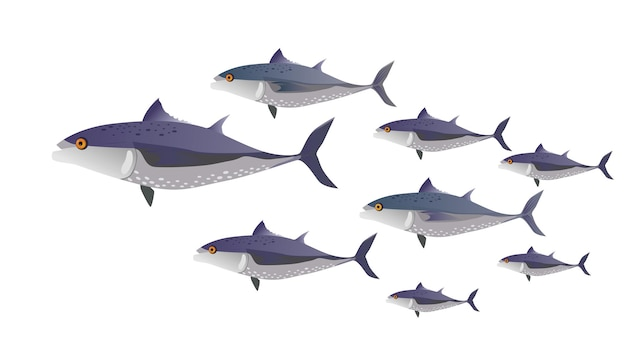 School of fish (tuna) in color. fish of different sizes - vector flat illustration.