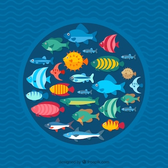 School of fishes background with deep sea in flat style