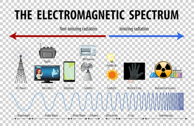 Diagramma dello spettro elettromagnetico di scienza su sfondo trasparente