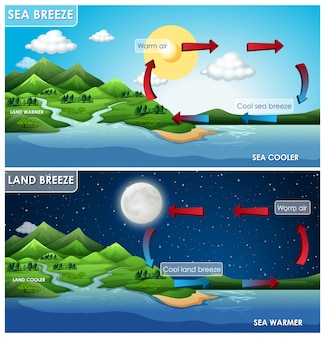Science infographic for land and sea breeze