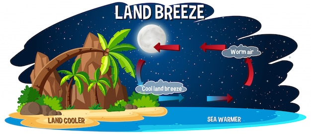 Science poster for land breeze