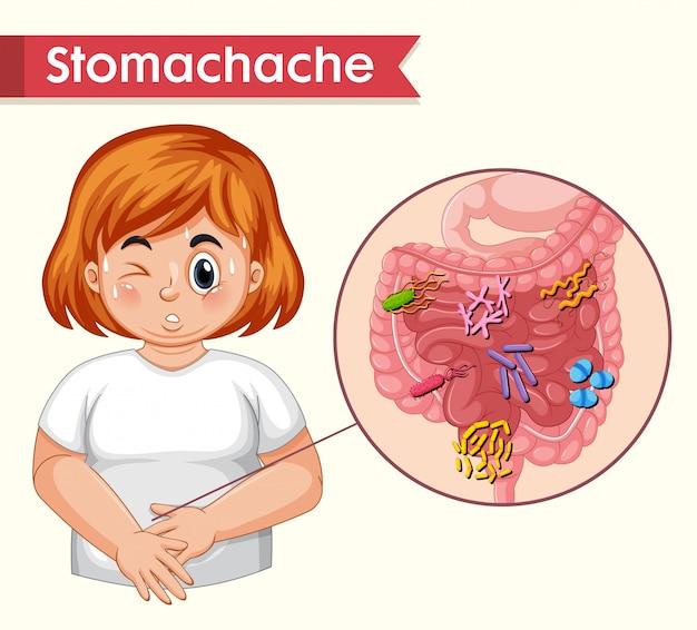 Scientific medical, stomach ache