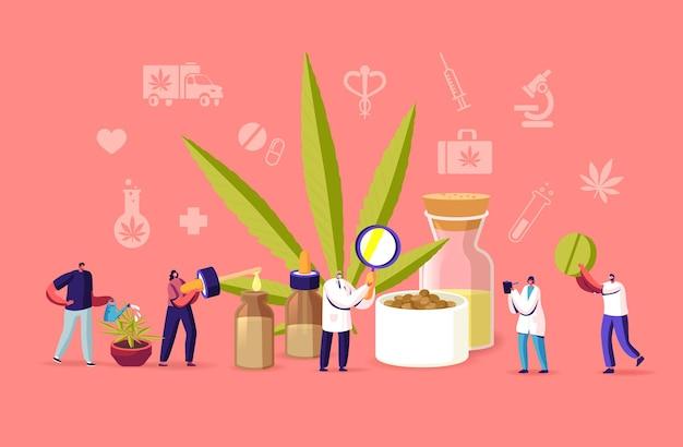 과학자 캐릭터는 의료용 대마초를 재배하고 마리화나의 동종요법을 준비합니다. 개인 사용을 위한 대마초 조리법, 법적 라이트 약물 처방 개념. 만화 사람들 벡터 일러스트 레이 션
