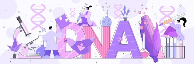 실험실 유전자 변형 야채와 동물 수평 전체 길이 벡터 일러스트 레이 션에서 실험을 만드는 옥수수와 닭 연구원의 dna로 작업하는 과학자