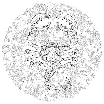 Scorpion and roses hand drawn sketch illustration for adult coloring book