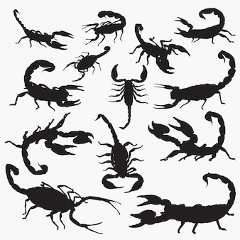 Scorpion silhouette set
