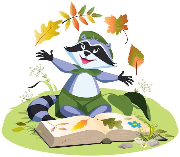 Разведчик собирает гербарий растений енот-бойскаут сидит на траве с открытой книгой