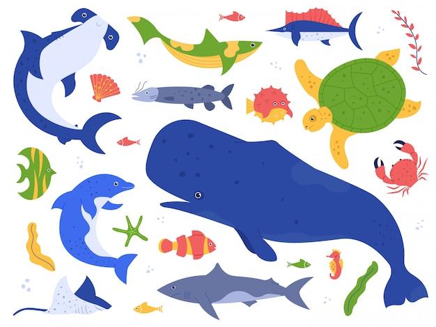 海の動物種。自然の生息地にいる海洋動物。かわいいクジラ、イルカ、サメ、カメのイラストセット。海底の世界パック。水生植物海藻と藻類のコレクション
