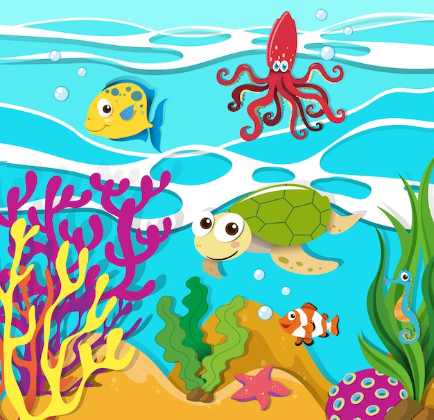 Sea animals swimming in the ocean