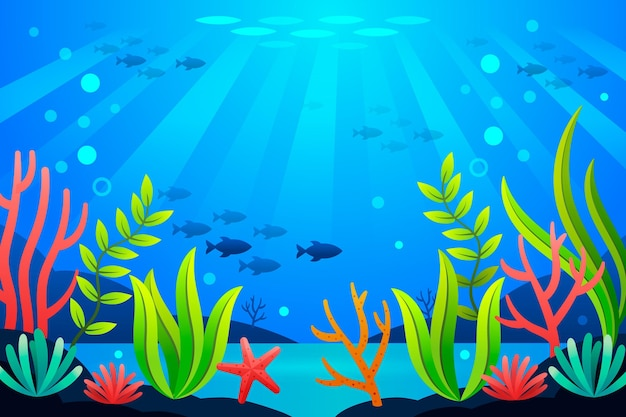 Under the sea - background for video conferencing