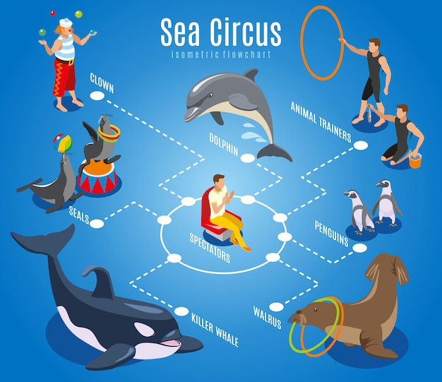 Sea circus flowchart with animal trainers spectators seals walrus penguins dolphin killer whale isometric illustration