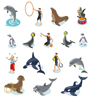 Sea circus isometric set of seals walrus penguins dolphin killer whale animal trainers and juggling clown