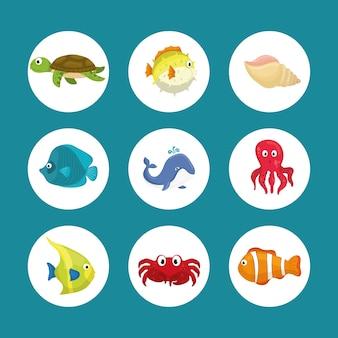 Мультфильм морской фауны