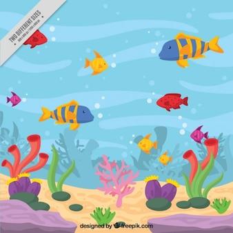 Морское дно фон с цветными рыбами