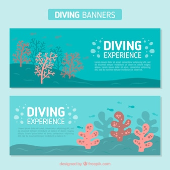 해저 다이빙 배너