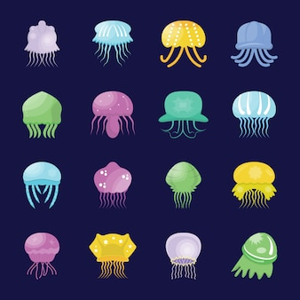 Sea jellies flat icons