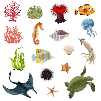 Sea life cartoon icons set