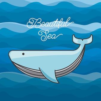 Sea life conceptual poster