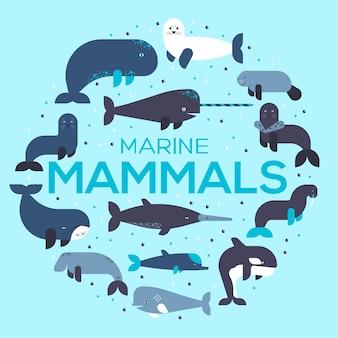 海の哺乳類動物コレクションアイコンサークルセット。海洋生物の背景に魚のイラスト。