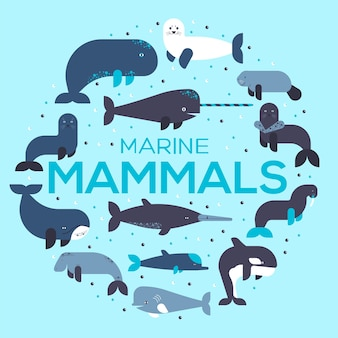 Sea mammals animal collection icons circle set.  fish illustration in ocean life background.