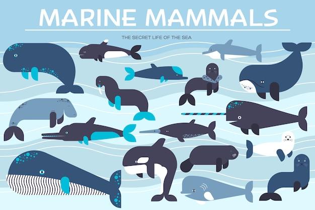 海の哺乳類動物コレクションアイコンセット