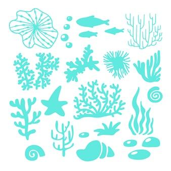 바다 또는 바다 동식물
