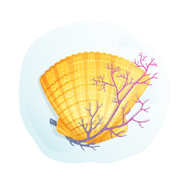 Sea shell and a coral