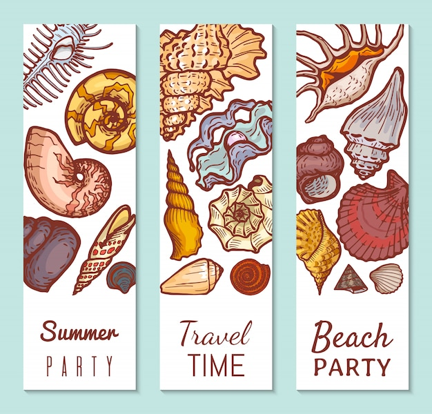 Sea shell poster concept banner, summer party travel time and beach gathering   illustration. tropical vacation, explore ocean flora fauna.