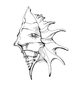Морская раковина, эскиз стиля векторные иллюстрации, изолированные на белом фоне. вектор шаблона.