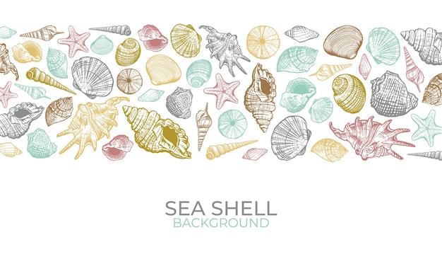 貝殻の背景。手描きのトレンディなカラーシェル。夏のバナーデザイン