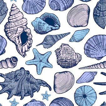 貝殻のカラフルなシームレスパターン。シェル美しい手描きイラスト。海洋の背景。