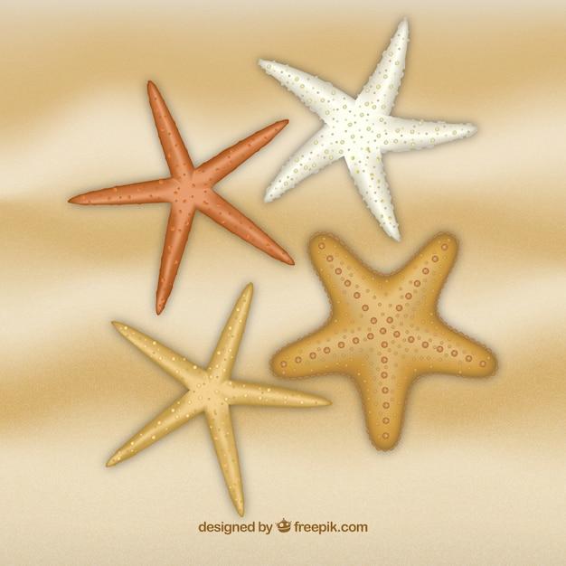 starfish vectors photos and psd files free download rh freepik com starfish vector image starfish vector png