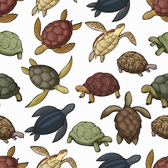 Sea turtle animals seamless pattern background