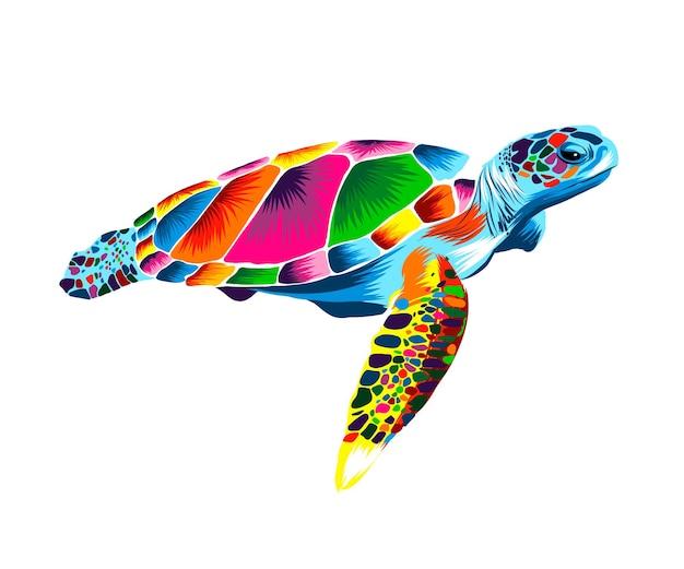 여러 가지 빛깔의 물감에서 바다 거북 현실적인 수채화 컬러 그림의 스플래시
