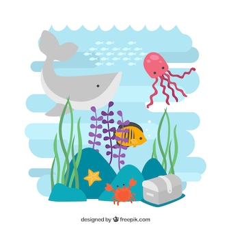海の野生動物の背景