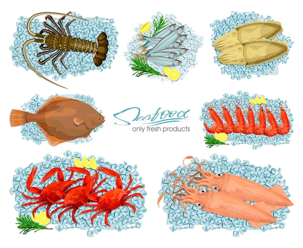 Seafood in cartoon style vector illustrations icons set